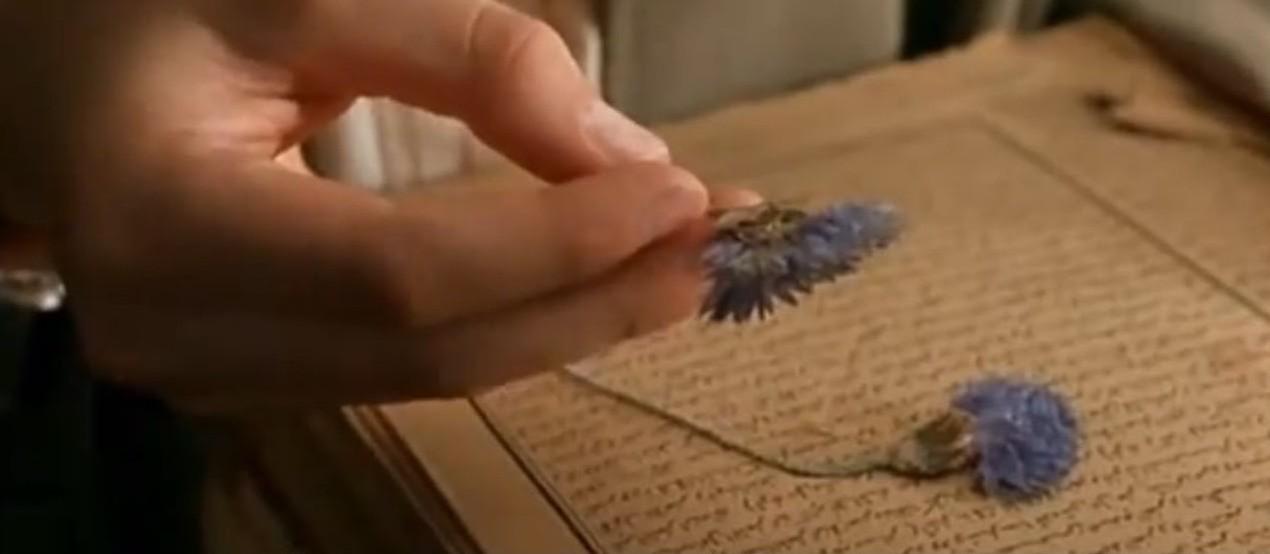 fleur islam